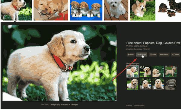 Obtenir le bouton Afficher l'image dans la recherche d'images Google